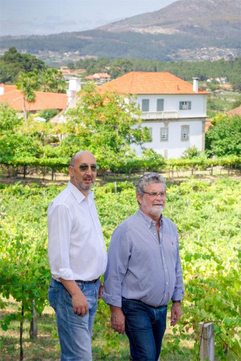 Em Melgaço nascem vinhos vegan por amor ao alvarinho
